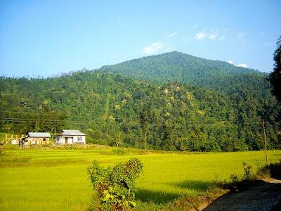 Samsing, Jalpaiguri