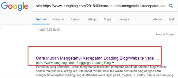 Contoh artikel blog sudah terindeks oleh mesin pencari Google