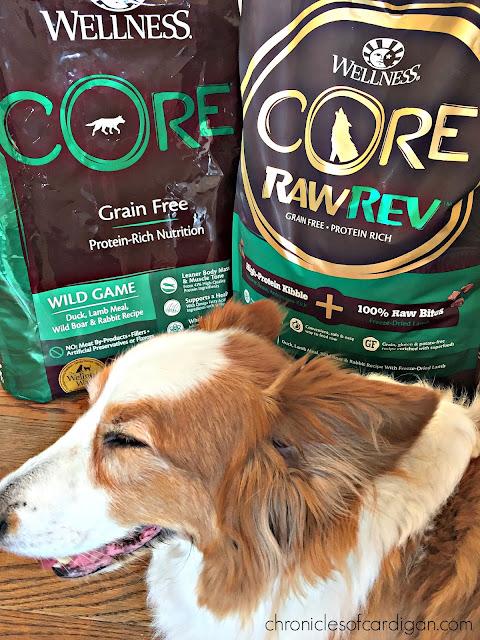 Dog Food Wellness Complete Healthy Weight Pet Suppliesplus
