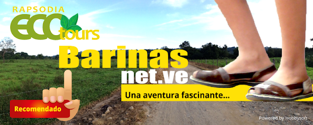 http://www.barinas.net.ve