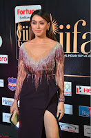 Hansika Motwani in Glittering Deep Neck Transparent Leg Split Purple Gown at IIFA Utsavam Awards 30.JPG