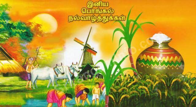 pongal tamil images