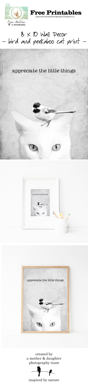 Paper Meadows Photography Blog- Free Printable- Peekaboo Animal, Cat and Bird Print, Wall Decor, Wall Art