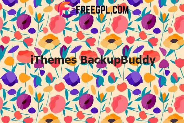 iThemes BackupBuddy Nulled Download Free
