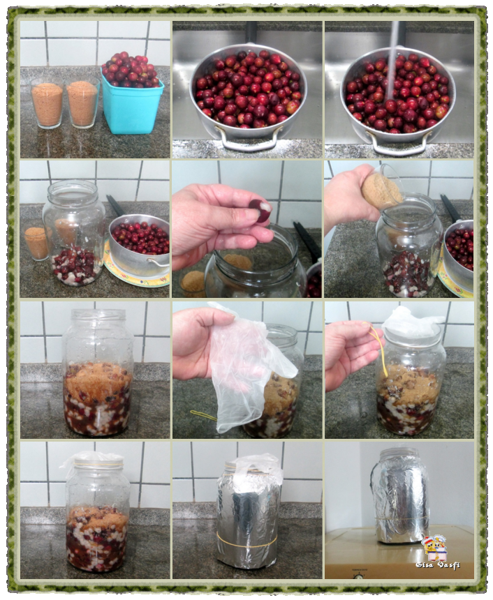 Aceto balsâmico e vinagre de jabuticaba 3