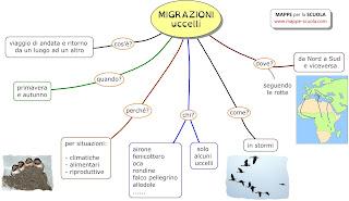 http://www.mappe-scuola.com/2016/05/migrazione-degli-uccelli.html
