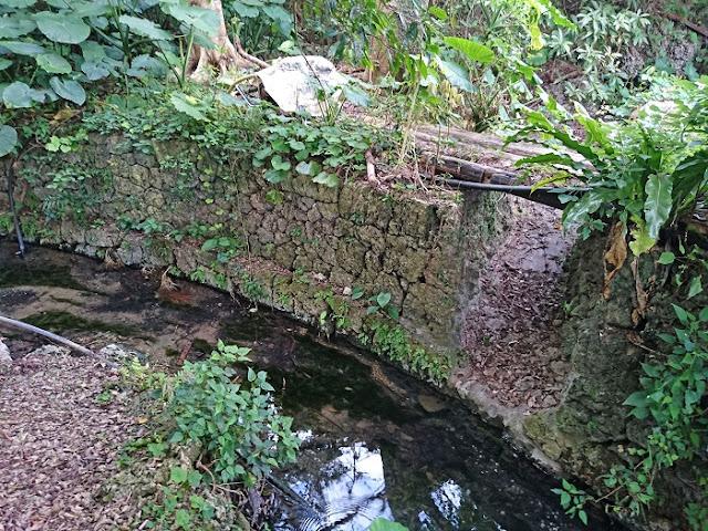 カンチャ大川の写真