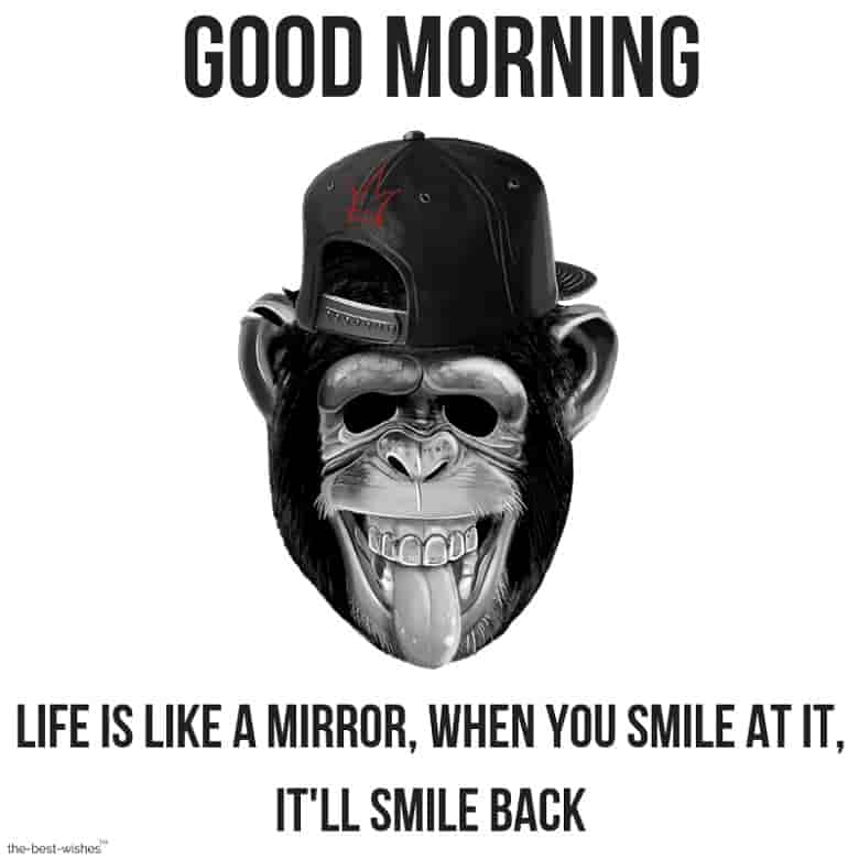 laughing monkey good morning quotes