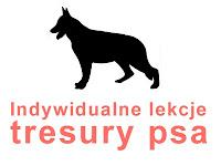psi behawiorysta usługi zapisy