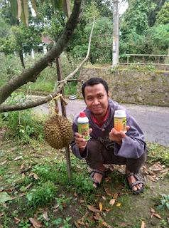 https://www.produknasaonline.com/2016/11/cara-agar-durian-cepat-berbuah.html