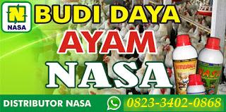 AGEN NASA DI Bunga Mas Bengkulu Selatan - TELF 082334020868