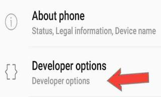 Cara Mengaktifkan Opsi Pengembang Di Android Smartphone
