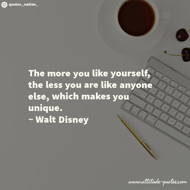 The more you like yourself, the less you are like anyone else, which makes you unique.  ~ Walt Disney
