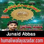 http://www.humaliwalayazadar.com/2016/04/junaid-abbas-manqabat-2016.html