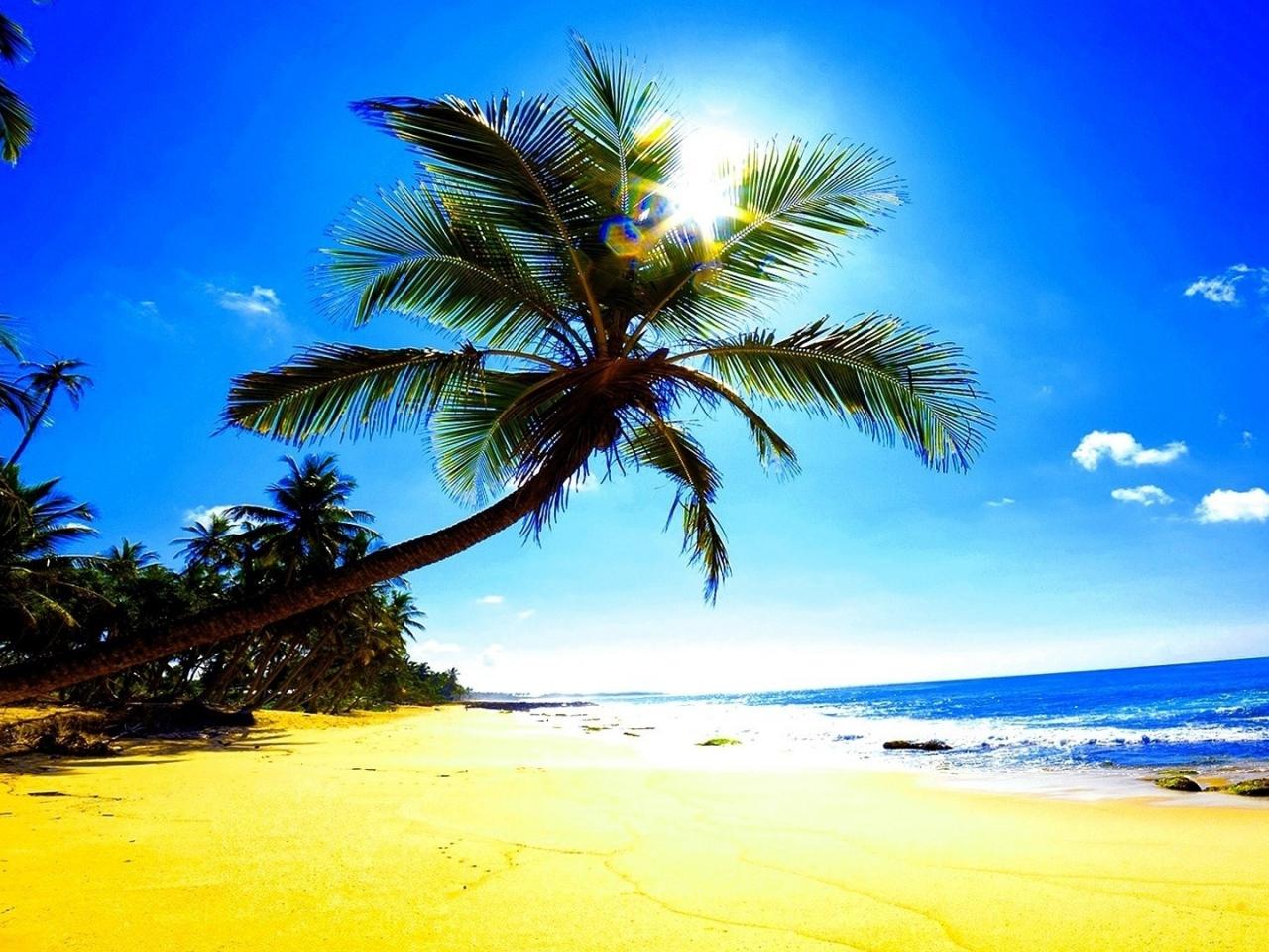Fondo De Pantalla Playa