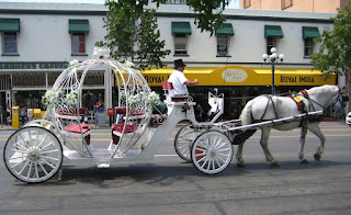 Top Cinderella Wedding Carriages and Horses