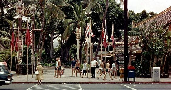 THE HULA GIRLS: The International Market Place (and the