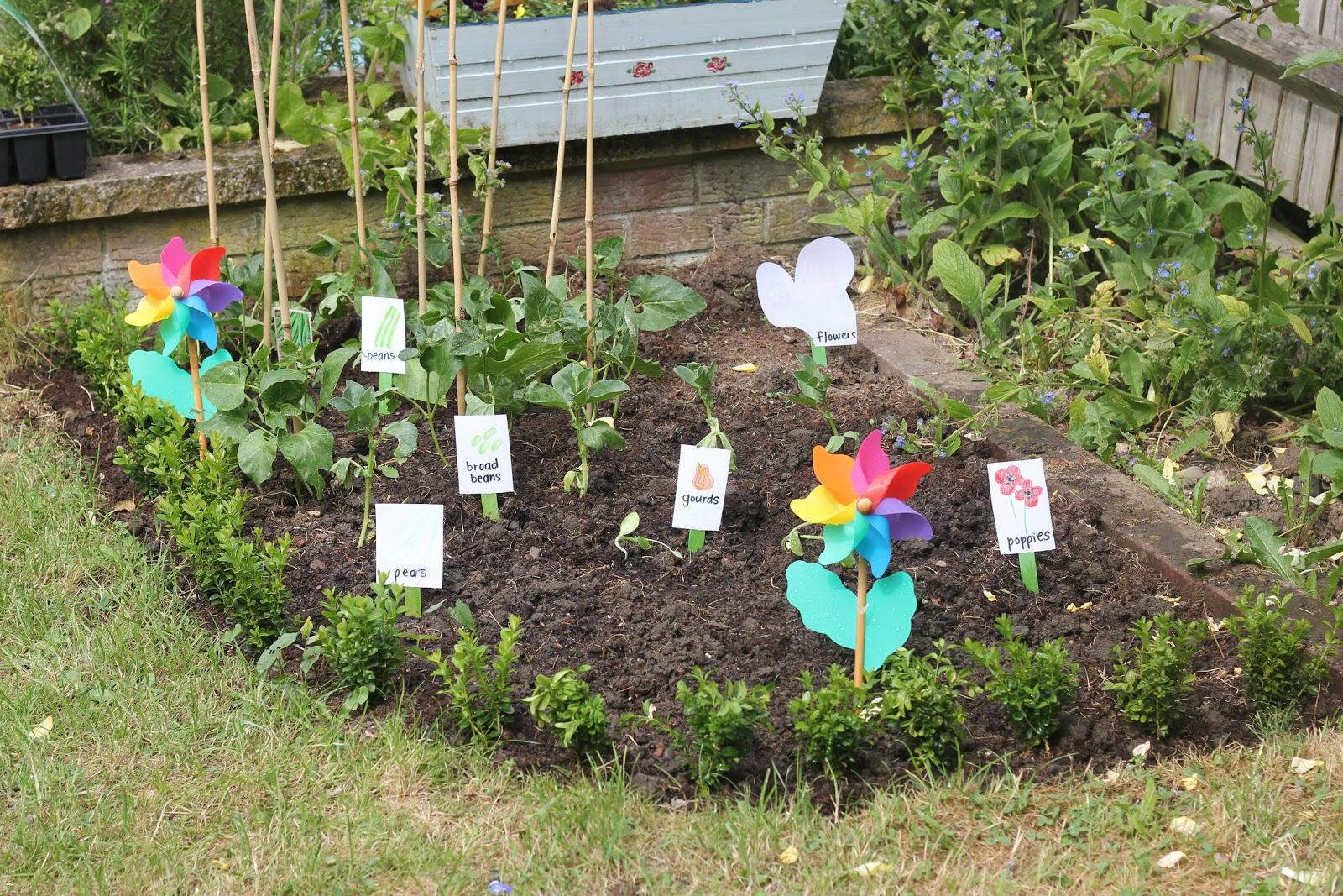 Making An Organic Vegetable Garden With Children