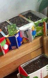 http://www.muyingenioso.com/viveros-reciclando-tetra-briks/