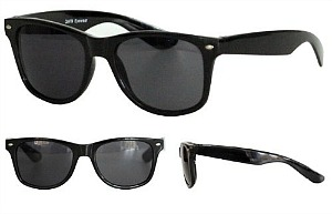 Wayfarer Sunglasses for Ska Costume