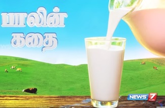 Documentary about milk | News 7 Tamil