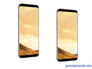 Cara Flashing Samsung Galaxy S8+ SM-G955F