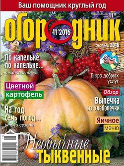 Читать онлайн журнал<br>Огородник (№11 ноябрь 2016)<br>или скачать журнал бесплатно