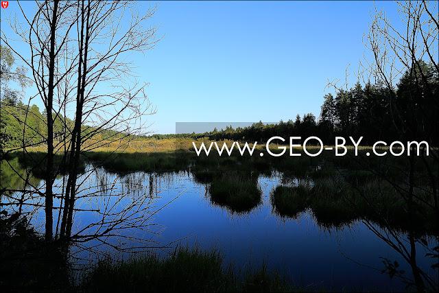 Forest lake near the settlement of Bliznieta (Twins)