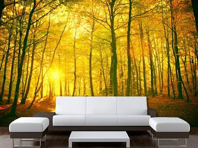 snygga tapeter skogstapet träd trädstammar höst gul fondtapet löv snygga fototapeter