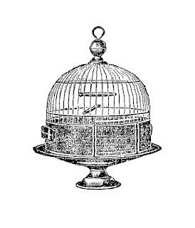 bird clip art cage image download