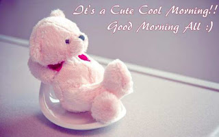 teddy good morning