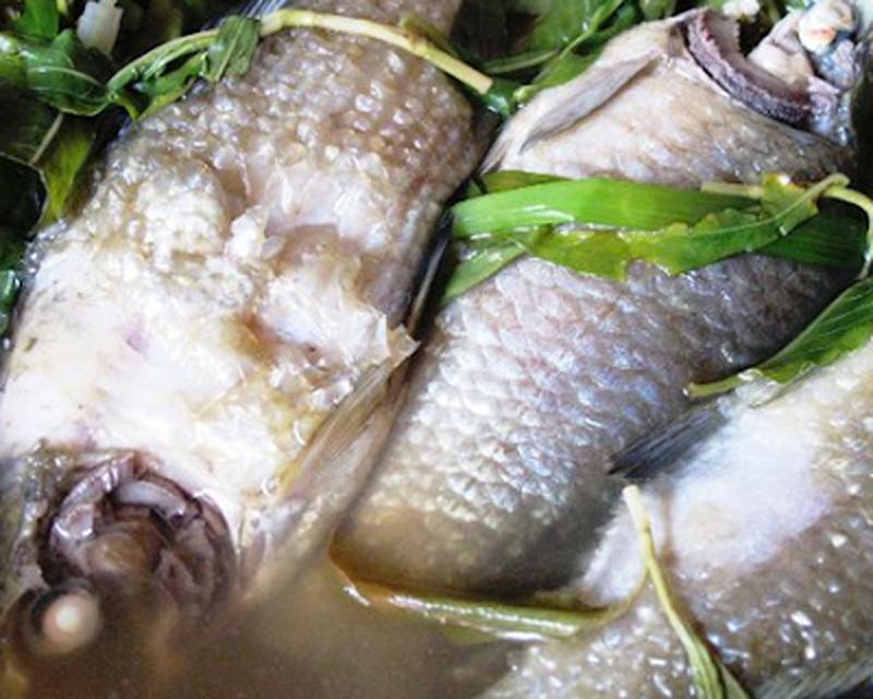 Cá Diếc Và Những Bài Thuốc Dân Gian