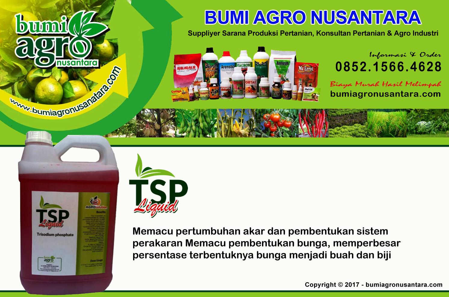 bumi agro nusantara, tsp cair, tsp liquid, pupuk organik cair, pupuk organik, pupuk ramah lingkungan, pupuk pertumbuhan,
