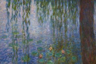 Paris : Les Nymphéas de Claude Monet au Musée de l'Orangerie - Jardin des Tuileries - Ier