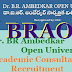 Dr. BR Ambedkar Open University/BRAOU Academic Consultants Recruitment 2017
