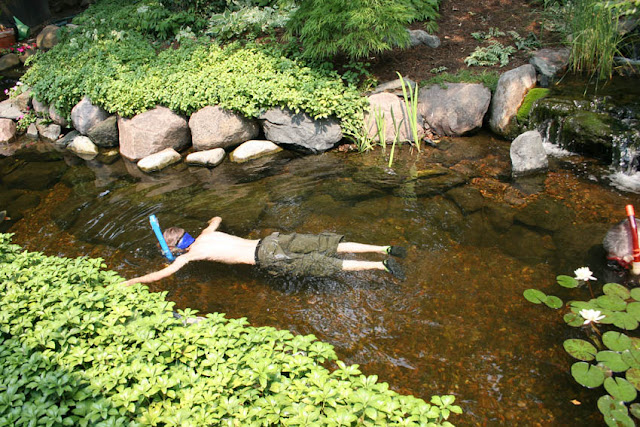 Aquascape your landscape ponds aren 39 t just for fish for Koi pond rock bottom