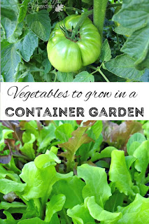 Everything you need to know to start a container garden.