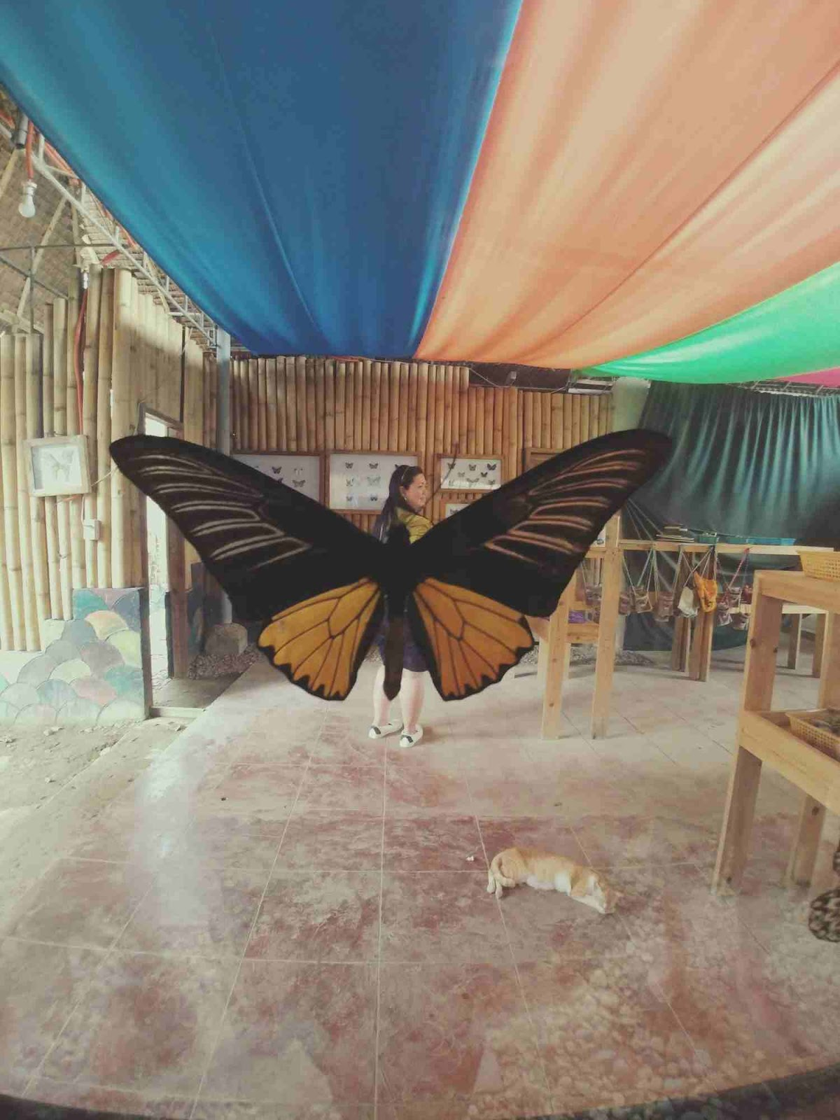 a creative shot with butterfly wings in Bohol