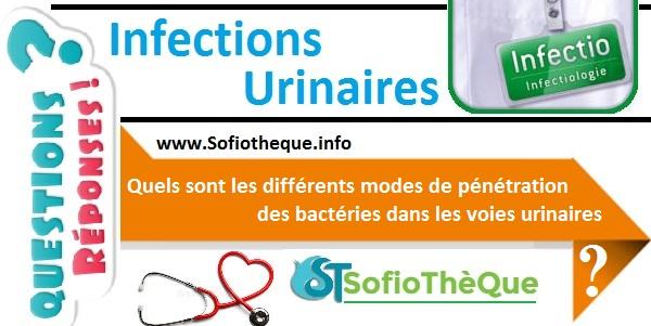 QR | Les différents modes de pénétration bactérienne dans les voies urinaires