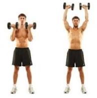 Program Latihan Bahu Dengan Dumbell zonapelatih