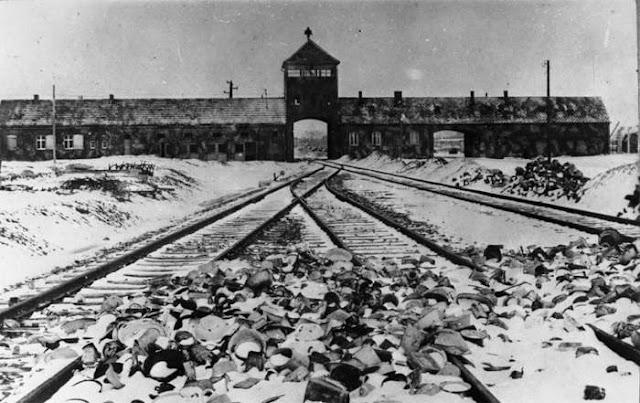 olocausto-poesia-citazioni-frasi-celebri
