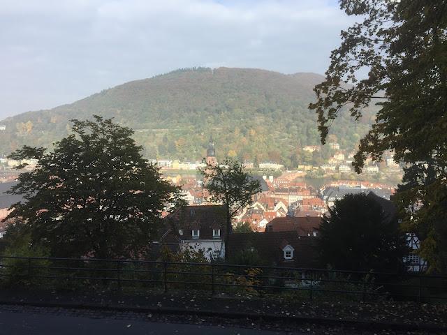 Heidelberger Altstadt von oben