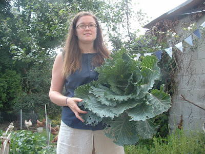 Woman holding a large savoy cabbage in a garden, with chickens behind