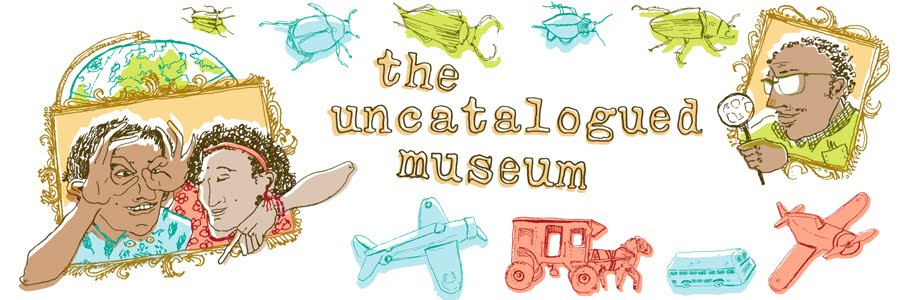 The Uncataloged Museum