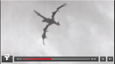 Real Life Flying Dragon Discovered In England ( video )