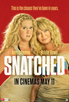 Snatched 2017 Hindi Dual Audio 720p & 480p BluRay Movie Download