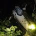 Kereta Terjunam Dalam Gaung, Bayi Maut