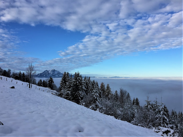 Seebodenalp und Aussicht auf das Nebelmeer und den Pilatus