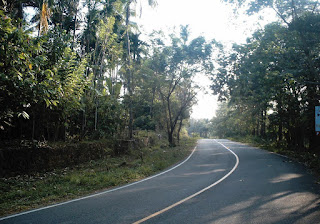 road to waterfalls
