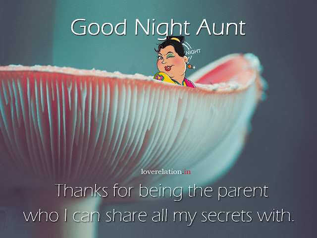 Cute Good Night Messages For Aunty